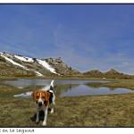 Ascensión a la Laguna de Sierra Seca (y Cerro de la Laguna, 2009m).