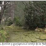 por los arroyos de la Yedra y las Acebadillas y el río Guadalentín