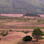 la Berrea en Cazorla y Segura