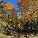la Hoya del Bailaor