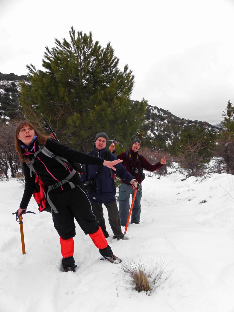 Pinar de la Fonfría, Sierra de baza